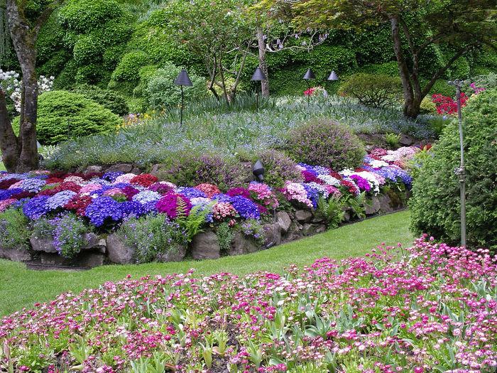 Многолетние цветы — ландшафтный