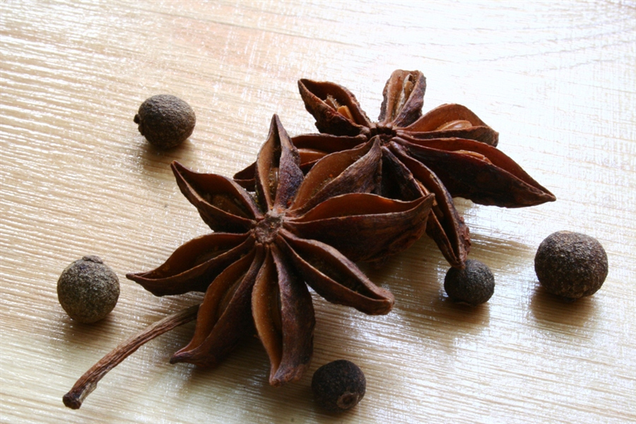 Как вырастить бадьян из семян в домашних условиях